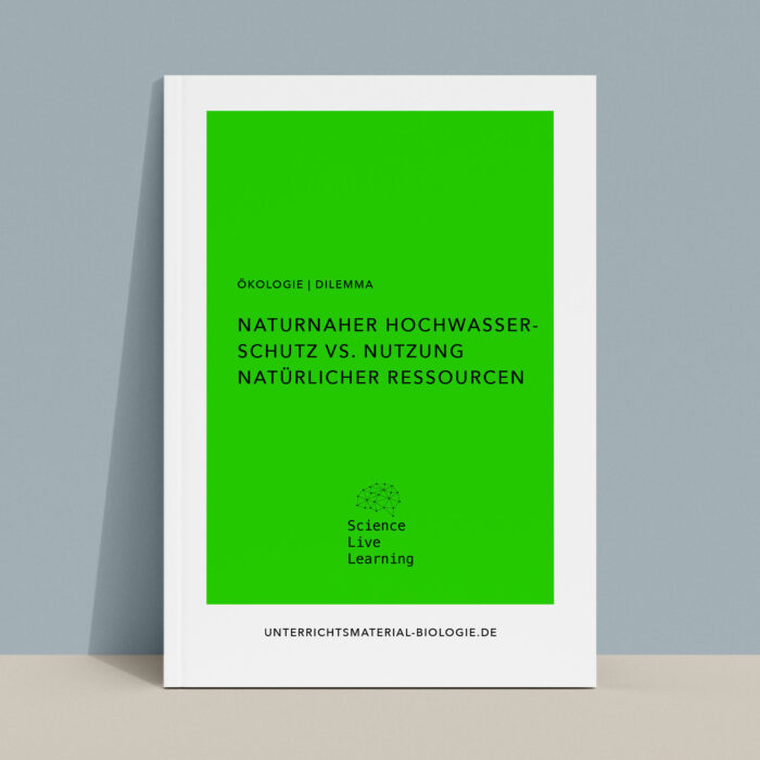 Dilemma Ökologie - Hochwasserschutz (TTB-Methode)